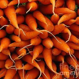 Noa Yerushalmi - Carrots