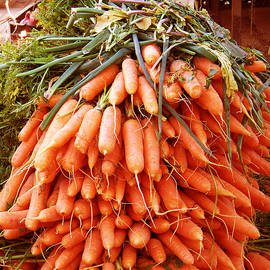 Carrots by Susan Lafleur