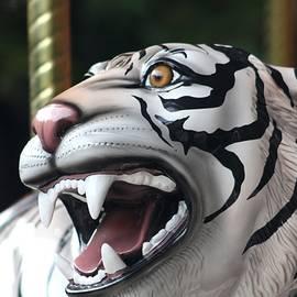Carrousel Tiger by Diane Merkle