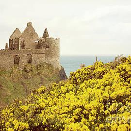 Juli Scalzi - Castle ruins and yellow wildflowers along the Irish coast