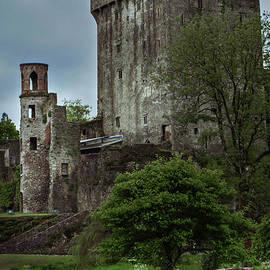 Castle Turret by Sharon Popek