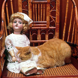 Cat and Doll by Sally Weigand