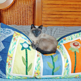 Cat Decorates Pillow by Sally Weigand
