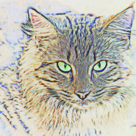 Jill Nightingale - Cat Eyes