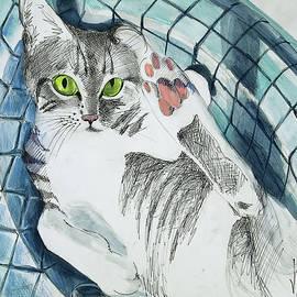 Cat In A Turkish Sink  by Vali Irina Ciobanu
