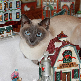 Sally Weigand - Cat in Christmas Village