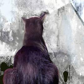 Cat's Blue Moon by Zsanan Studio