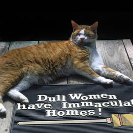 Cat On Dull Women Mat by Sally Weigand
