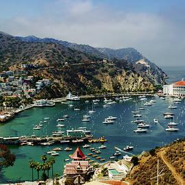 Joseph Hollingsworth - Catalina Island