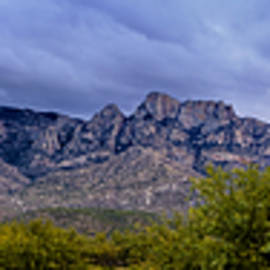 Mark Myhaver - Catalina Mountains P1