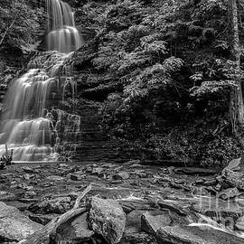 Thomas R Fletcher - Cathedral Falls Black and White