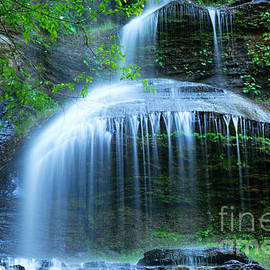 Cathedral Falls by Larry Ricker