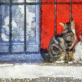 Cats in the Window by Sarah Kirk - Sarah Kirk