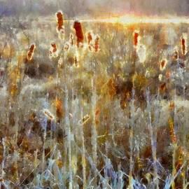 Janine Riley - Cattails - Misty Morning - Marsh - Frost