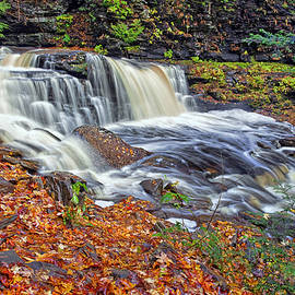 Cayuga Waterfall by Marcia Colelli
