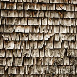 Cedar Shingles Pattern - Edward Fielding