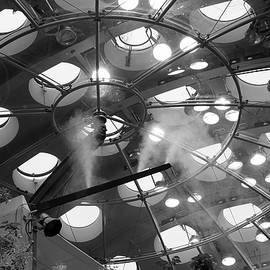 Bonnie Follett - Ceiling Abstract Academy of Sciences BW