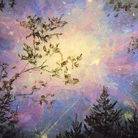 Celestial Escape by Jen Shearer