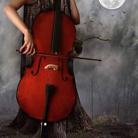 Mihaela Pater - Cello in the night