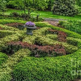 Celtic Topiary At Frelinghuysen Arboretum by Christopher Lotito