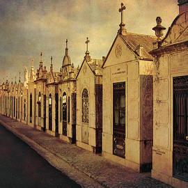 Cemetary In Santarem Portugal by Menega Sabidussi