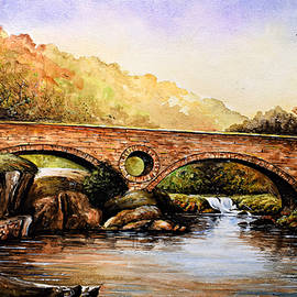 Andrew Read - Cenarth Bridge and Falls