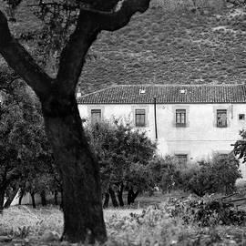 Guido Montanes Castillo - Centennial house