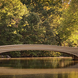 Central Park Bridge by Francisco Gomez