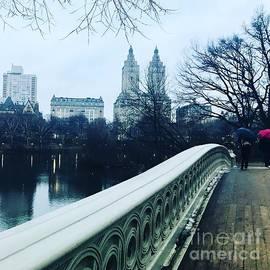 Beth Saffer - Central Park Drizzle