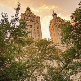 Central Park Skyline - Vivienne Gucwa
