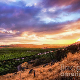 Central Valley by Anthony Michael Bonafede