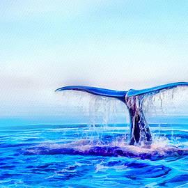 Scott Smith - Cetacean signs