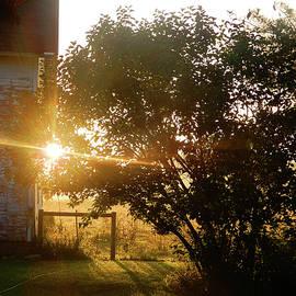Change Of Season Sunrise by Tina M Wenger