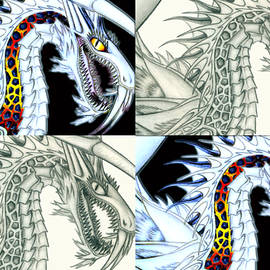 Chaos Dragon Fact W Fiction by Shawn Dall