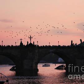Pat Dego - Charles Bridge. Prague.