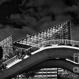 Tom Gari Gallery-Three-Photography - Chattanooga Aquarium Panoramic Black and White