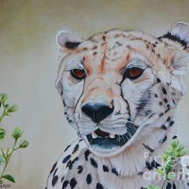 Jimmie Bartlett - Cheetah