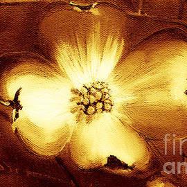 Cherokee Rose Dogwood - Single Glow by Jan Dappen