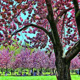 Allen Beatty - Cherry Blossom Trees of B B G # 9 - Photopainting