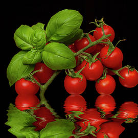 David French - Cherry Tomatoes and Basil