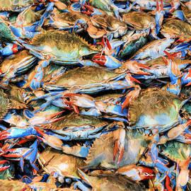 Chesapeake Bay Blue Crabs by JC Findley