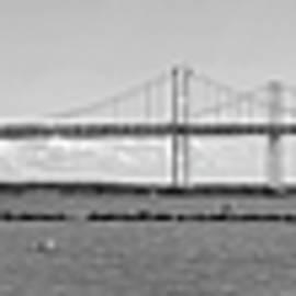Brian Wallace - Chesapeake Bay Bridge From Sandy Point