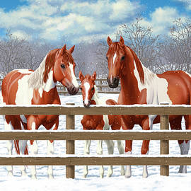 Chestnut Paint Horses In Snow - Crista Forest