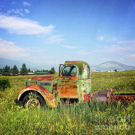 Chevy In A Field by Terry Rowe