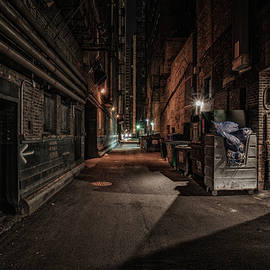 Chicago alley - Reinier Snijders