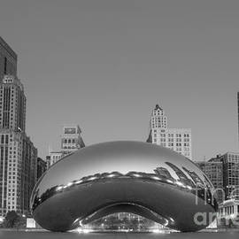 Chicago Bean Bw by Michael Ver Sprill