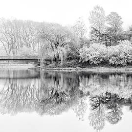 Julie Palencia - Chicago Botanic Garden in Black and White