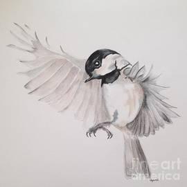 Jamie Silker - Chickadee in Flight