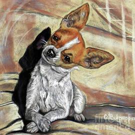 Cat Culpepper - Chihuahua