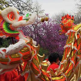 Ginger Repke - Chinese Dragon 1